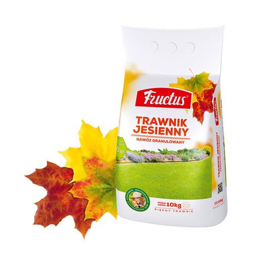 Trawnik Jesienny