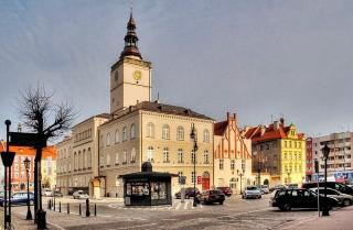 Towarzystwo Miłośników Dzierżoniowa